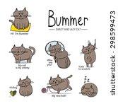 illustration cat | Shutterstock . vector #298599473