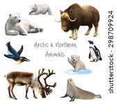 animals of the arctic and... | Shutterstock . vector #298709924