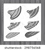 set of six wings. decoration...