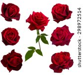 Collage Of Seven Red Roses...