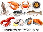 Different Kind Of Fresh Seafood