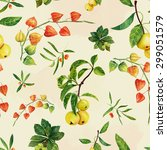 watercolor physalis  apples and ... | Shutterstock . vector #299051579
