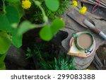 hot coffee and a garden. | Shutterstock . vector #299083388