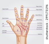 palmistry map on open palm.... | Shutterstock .eps vector #299173196