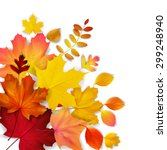 isolated autumn leaves  vector... | Shutterstock .eps vector #299248940