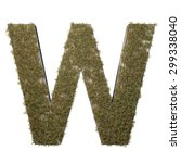 letter w made of dead grass ...