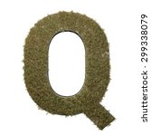 letter q made of dead grass ...