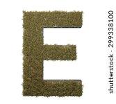 letter e made of dead grass ...