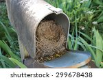 Bird nest in an old mailbox prevents mail delivery - stock photo