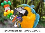 Parrot. Macaw