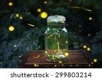 Fireflies In A Jar.  Long...