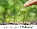 agriculture. growing plants.... | Shutterstock . vector #299846063