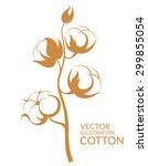 cotton. vector illustration   | Shutterstock .eps vector #299855054