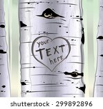 birch tree with carved hearts...