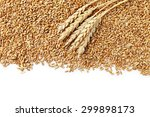 wheat grains on a white... | Shutterstock . vector #299898173