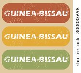 guinea bissau on colored... | Shutterstock .eps vector #300033698