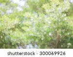 Bokeh Of Tree Background