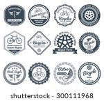 cycling club retro decorative... | Shutterstock .eps vector #300111968