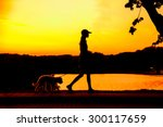 Stock photo silhouette of girl walking with her puppy 300117659