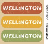 wellington on colored background | Shutterstock .eps vector #300119828