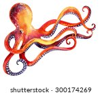 watercolor octopus. hand... | Shutterstock . vector #300174269