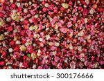 Stock photo closeup image of beautiful flowers wall background with amazing red and white roses 300176666