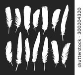 feathers silhouettes set | Shutterstock .eps vector #300204320