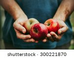organic fruit and vegetables.... | Shutterstock . vector #300221870