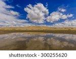 Gobi Desert After Rain....