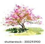 Cherry Blossom Bush Drawing By...