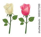 rose vector on a white... | Shutterstock .eps vector #300327200