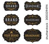 vintage  calligraphic  frames... | Shutterstock .eps vector #300339494