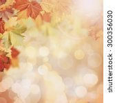 abstract autumnal backgrounds... | Shutterstock . vector #300356030
