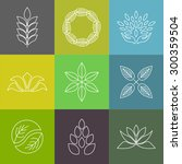 vector organic badges   outline ... | Shutterstock .eps vector #300359504