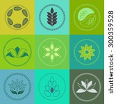 vector organic badges   outline ... | Shutterstock .eps vector #300359528
