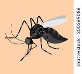 mosquito   Shutterstock .eps vector #300369086