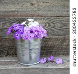 garden flowers in the bucket. | Shutterstock . vector #300422783
