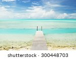 a small boardwalk jetting out... | Shutterstock . vector #300448703