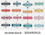 vintage logo template  hotel ... | Shutterstock .eps vector #300490910