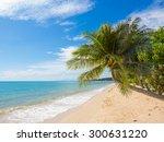 tropical beach of lamai in koh... | Shutterstock . vector #300631220