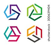abstract vector hexagon logo... | Shutterstock .eps vector #300639404