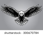 hand drawing style of eagle   Shutterstock .eps vector #300670784
