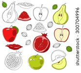 hand drawn vector food elements.... | Shutterstock .eps vector #300704996