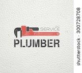 plumbing service. home repairs. ... | Shutterstock .eps vector #300728708