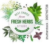 fresh herbs store emblem   easy ... | Shutterstock .eps vector #300740738