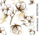 hand drawn cotton plant... | Shutterstock .eps vector #300741260