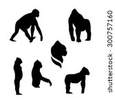 gorilla monkey vector icons and ... | Shutterstock .eps vector #300757160