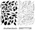 leaf vector | Shutterstock .eps vector #300777728