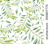 Green Watercolor Olive Branch...
