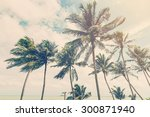Coconut Plam Tree On Beach Of...